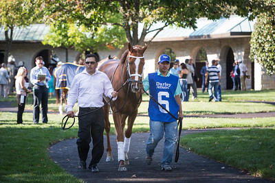 Battlefield Angel at Keeneland for the Alcibiades