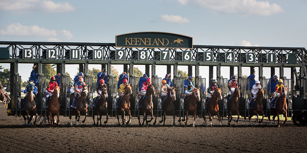 The start of the Darley Alcibiades at Keeneland on 10.4.2013