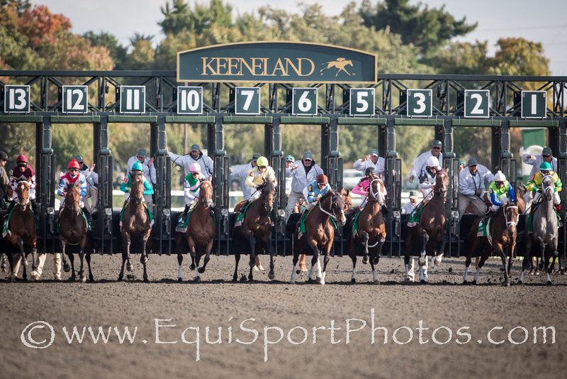 In lIngerie (Empire Maker) wins the Juddmonte Spinster Stakes (G1) at Keeneland on 10.07.2012.  Johnny Velazquez up, Todd Pletcher owner, Gary Barber and Eclipse Thoroughbred Partners owners.