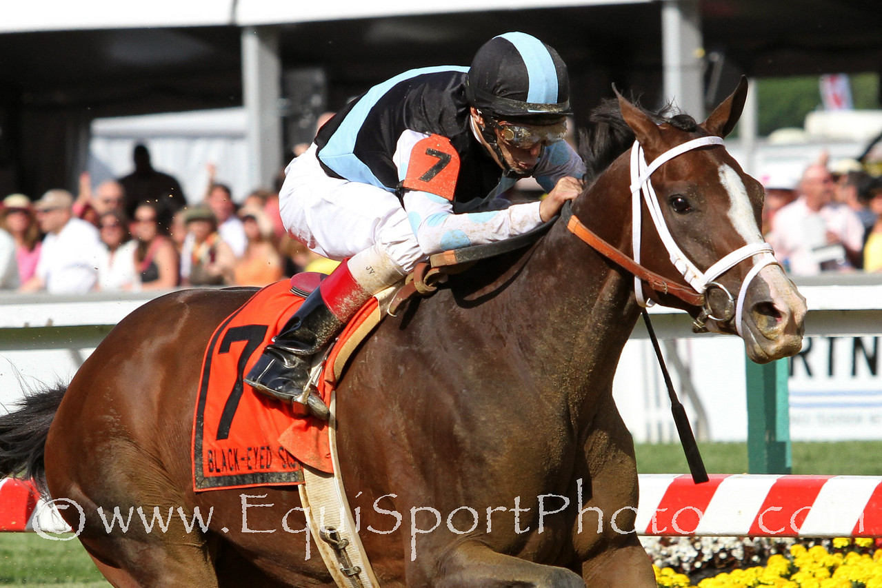In Lingerie (Empire Maker) and jockey John Velazquez win The Black-Eyed Susan Stakes (Gr. II) at Pimlico Racecourse 5/18/12. Trainer: Todd Pletcher. Owner: Eclipse Thoroughbred Partners