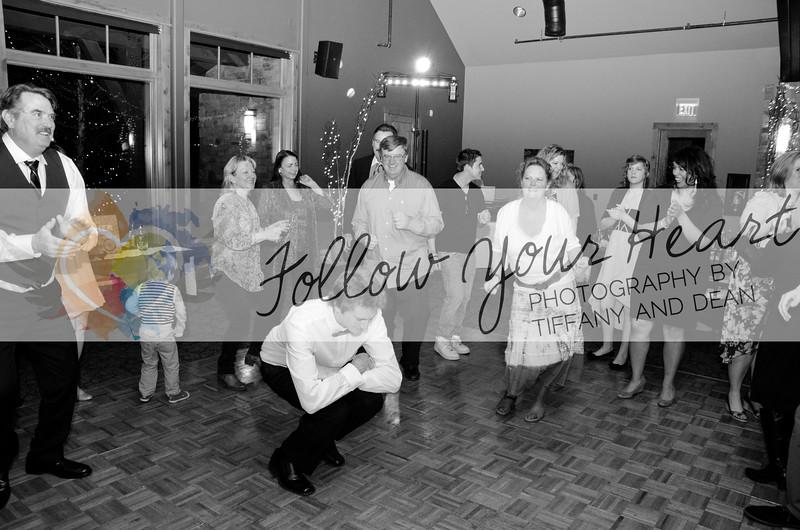 Edan & Alden Party!-0012