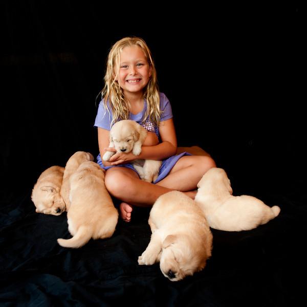 Puppies 121