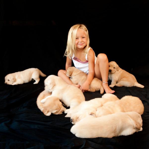 Puppies 135
