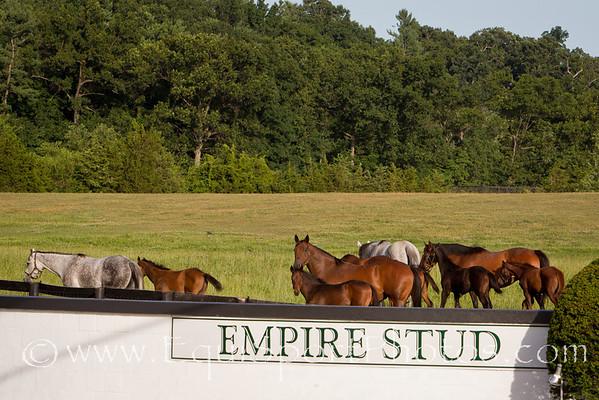 EmpireScenic_07 02 2010_esp-9013