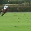 Polo (good run)