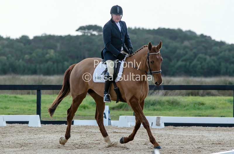 Ian Balfour riding LA NINA ROMANZA