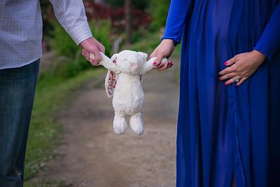 2016 Erica & Boston Maternity