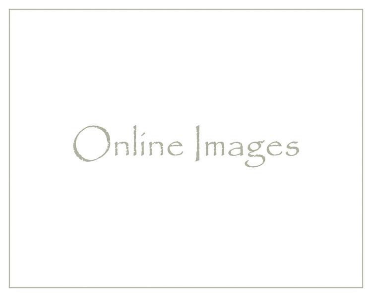 Online Images
