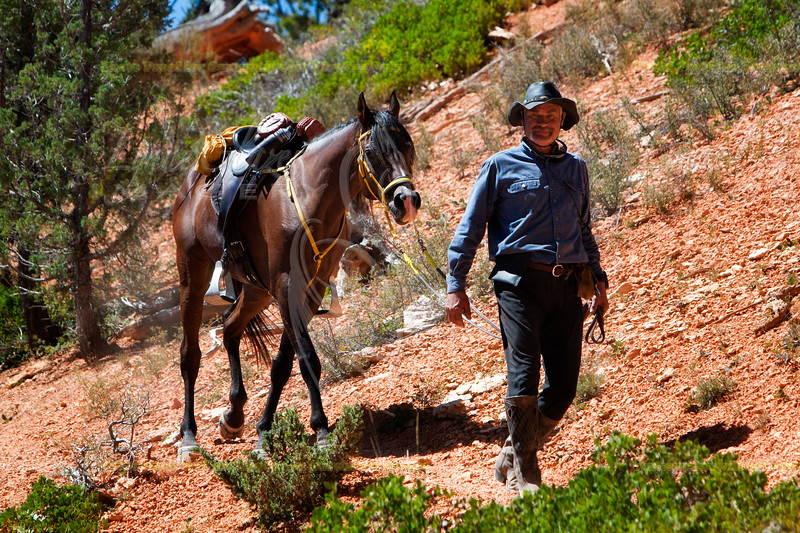 On the Blue Fly trail at Bryce, Gunnar Franks.