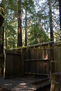 The famous redwood grove shower, made more interesting this year by a board down between the men's and women's side.