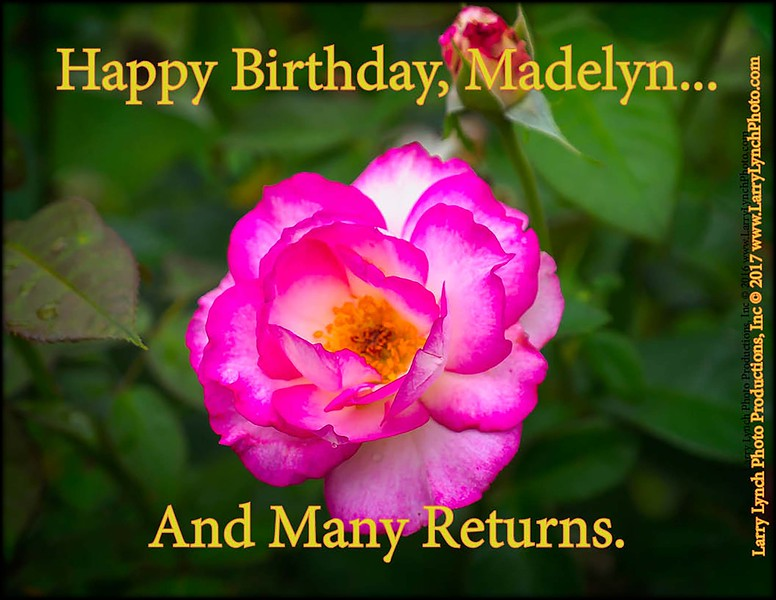 BirthdayCardMadelyn