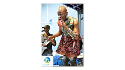 Afrofest July 2013 Logo HR-01