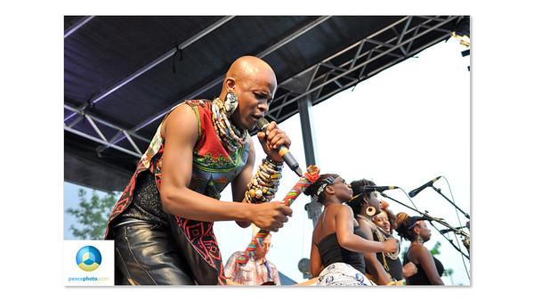 Afrofest July 2013 Logo HR-16
