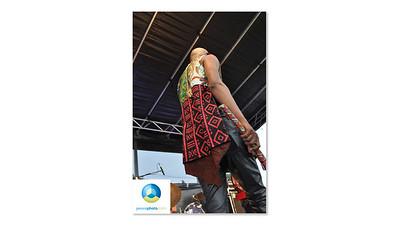 Afrofest July 2013 Logo HR-09