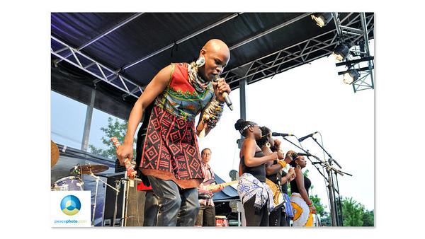 Afrofest July 2013 Logo HR-15