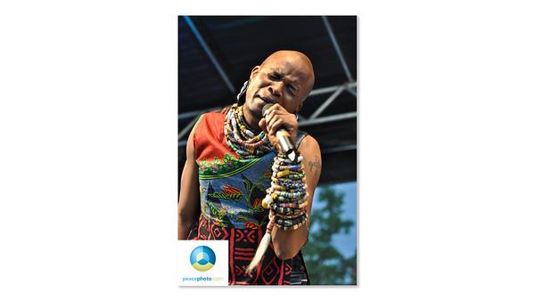 Afrofest July 2013 Logo HR-19