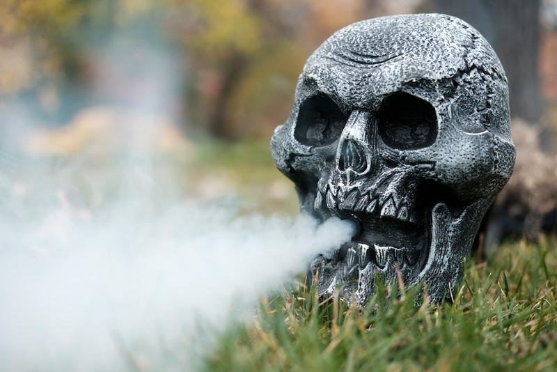 Anderson Gardens  Spook-tacular Haunts Halloween