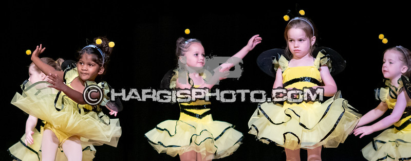 CCDS (C) 2019 Hargis Photography, All Rights Reserved-8424