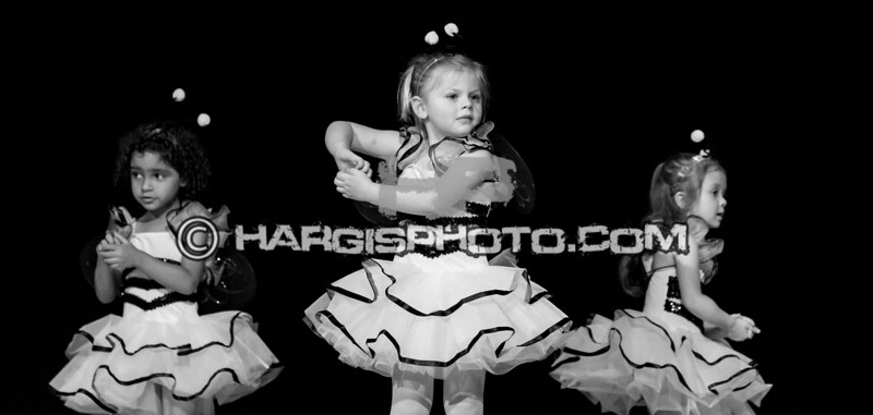 CCDS-Friday Recital (C) 2019 Hargis Photography, All Rights Reserved, DO NOT COPY-2548-2