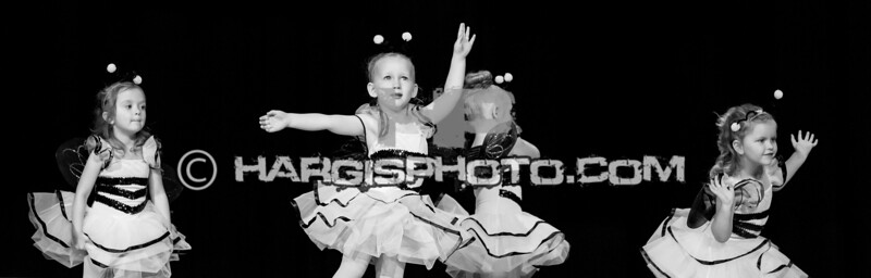 CCDS-Friday Recital (C) 2019 Hargis Photography, All Rights Reserved, DO NOT COPY-2555-2