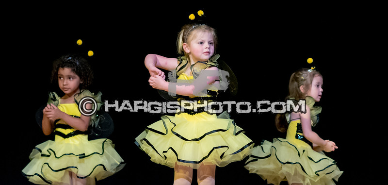 CCDS-Friday Recital (C) 2019 Hargis Photography, All Rights Reserved, DO NOT COPY-2548
