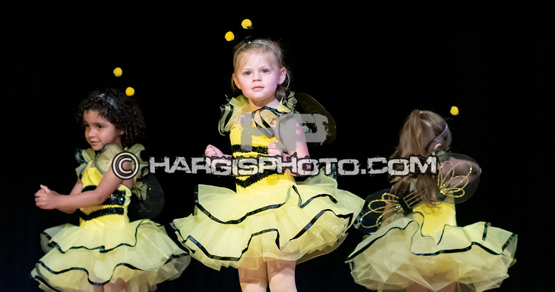 CCDS-Friday Recital (C) 2019 Hargis Photography, All Rights Reserved, DO NOT COPY-2546