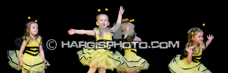 CCDS-Friday Recital (C) 2019 Hargis Photography, All Rights Reserved, DO NOT COPY-2555