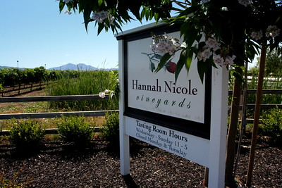 Hannah Nicole Vineyards Weddings