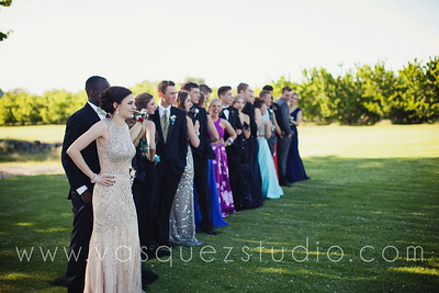 mlprom205