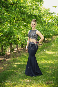 mlprom120
