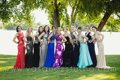 mlprom206