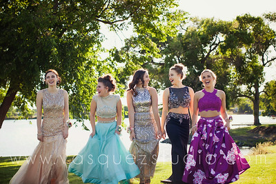 mlprom214