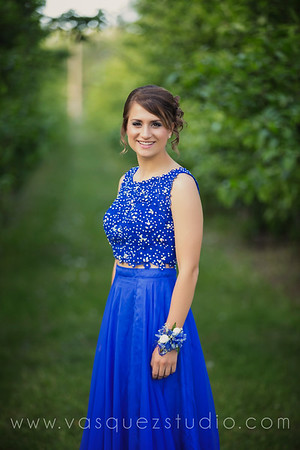 mlprom085
