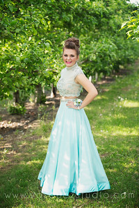 mlprom098