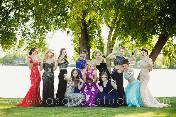 mlprom210
