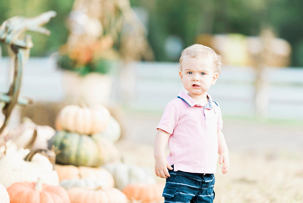 three-cedars-farm-fall-family-session-10