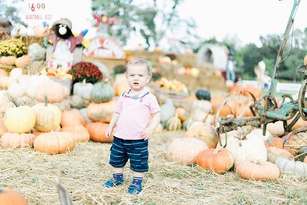 three-cedars-farm-fall-family-session-8