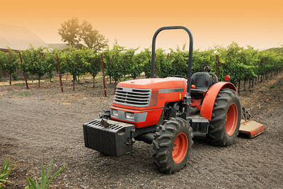 Small red tractor in vineyard