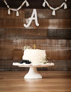Ashley Cake Smash-2585