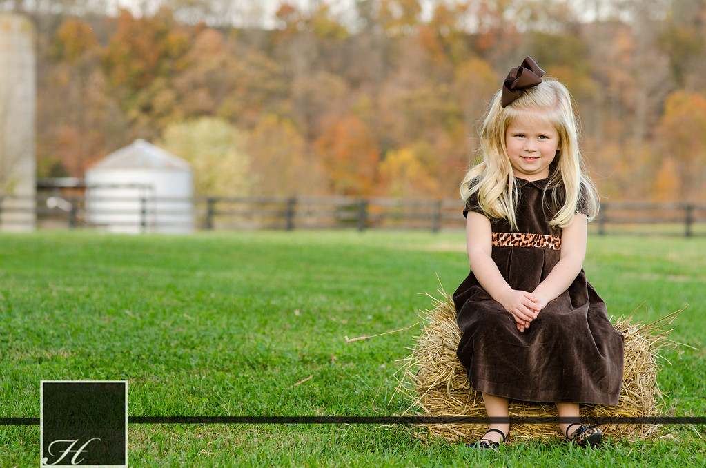 """5881 (C) Hargis Photography, All Rights Reserved,  <a href=""""http://www.hargisphoto.com"""">http://www.hargisphoto.com</a>"""