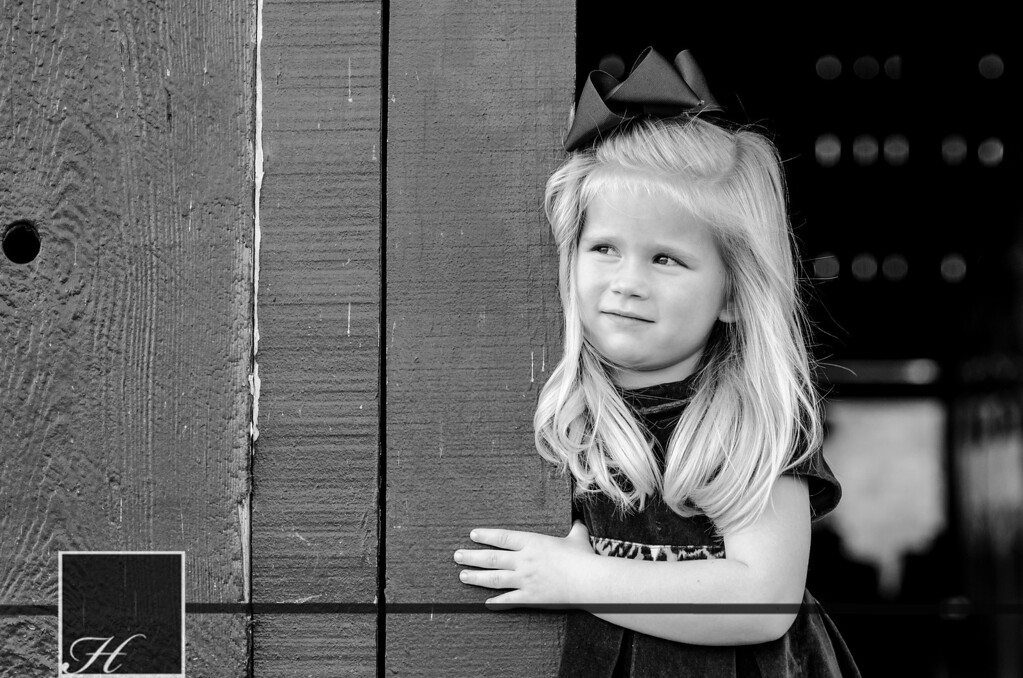 """5871 (C) Hargis Photography, All Rights Reserved,  <a href=""""http://www.hargisphoto.com"""">http://www.hargisphoto.com</a>"""