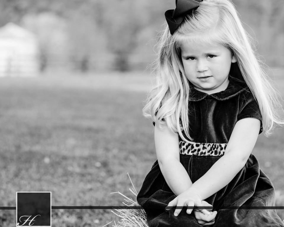 """5904 (C) Hargis Photography, All Rights Reserved,  <a href=""""http://www.hargisphoto.com"""">http://www.hargisphoto.com</a>"""