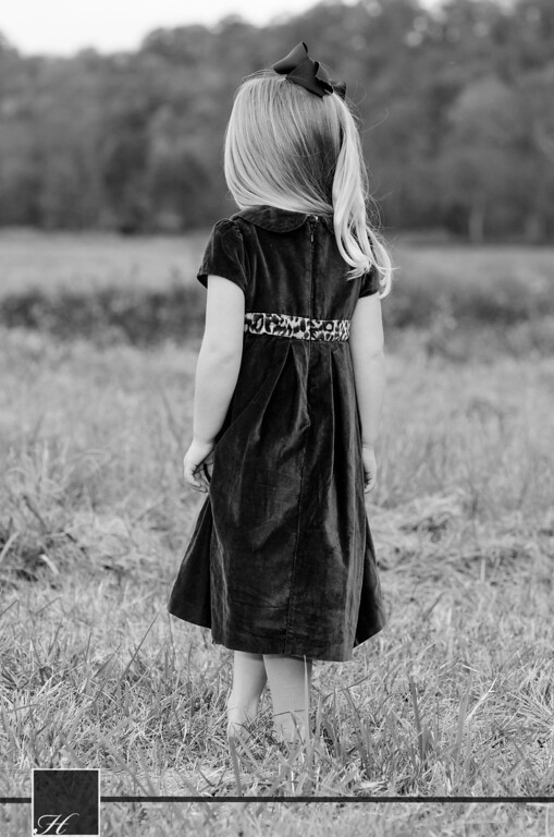 """6114 (C) Hargis Photography, All Rights Reserved,  <a href=""""http://www.hargisphoto.com"""">http://www.hargisphoto.com</a>"""