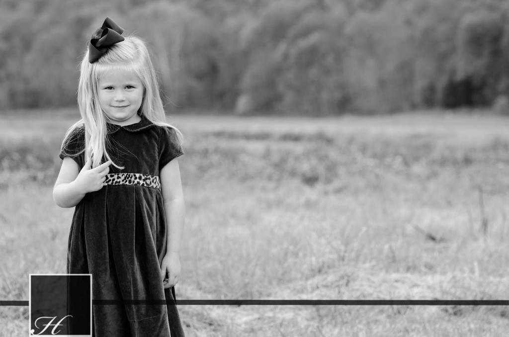"""6053 (C) Hargis Photography, All Rights Reserved,  <a href=""""http://www.hargisphoto.com"""">http://www.hargisphoto.com</a>"""