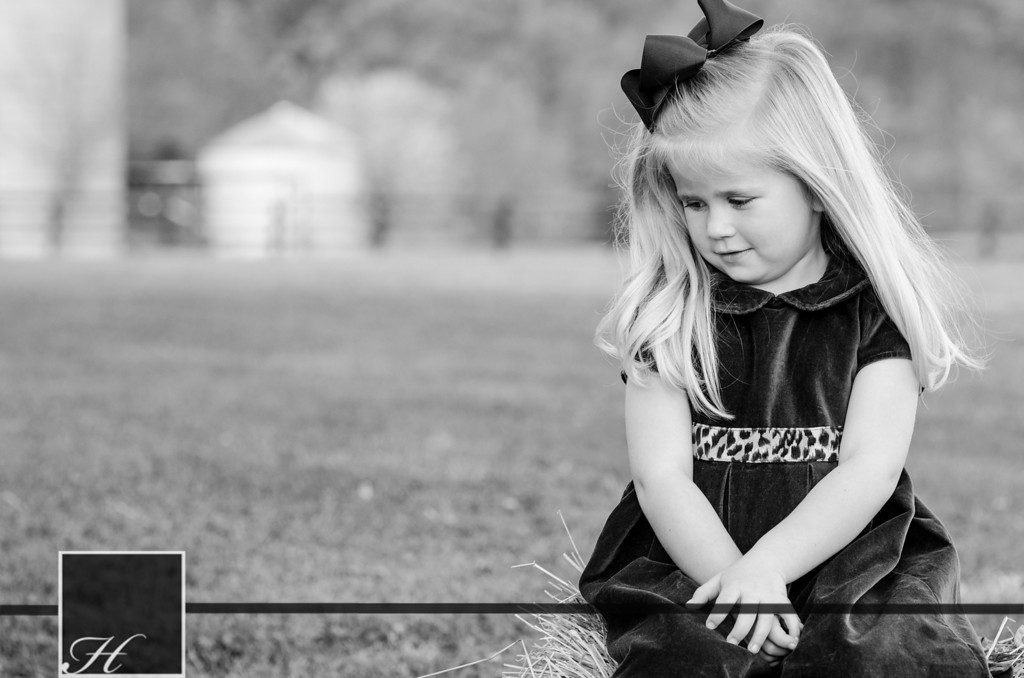 """5906 (C) Hargis Photography, All Rights Reserved,  <a href=""""http://www.hargisphoto.com"""">http://www.hargisphoto.com</a>"""