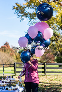 Welch-Baby Reveal-2020-5360