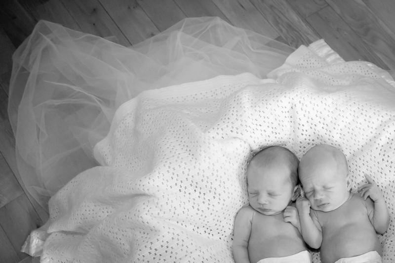 Twins Newborn_20130925_0046