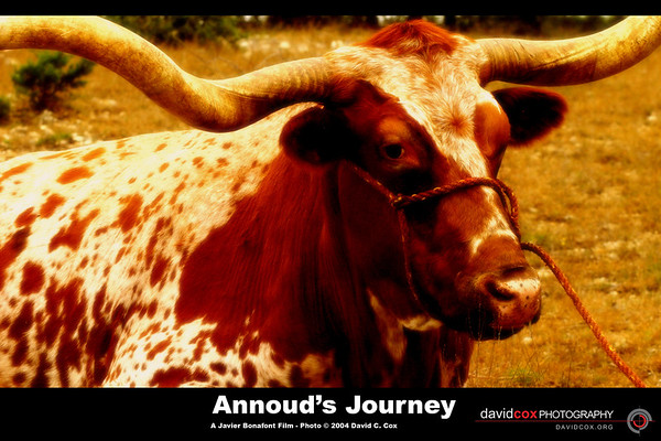 Annouds Journey - A Javier Bonafont Film 11-20-2004 (ranch)