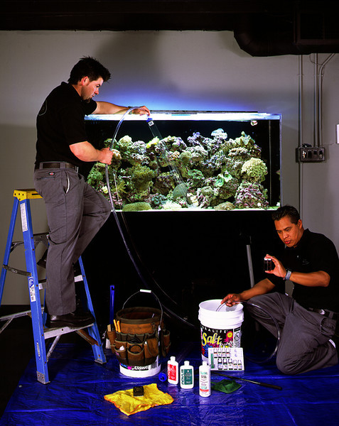 Fish King Custom Aquariums, Costa Mesa, CA.  2000-2013.