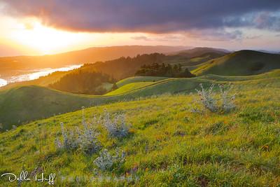 Sunset on Bolinas Ridge, Mt. Tamalpais, in spring.